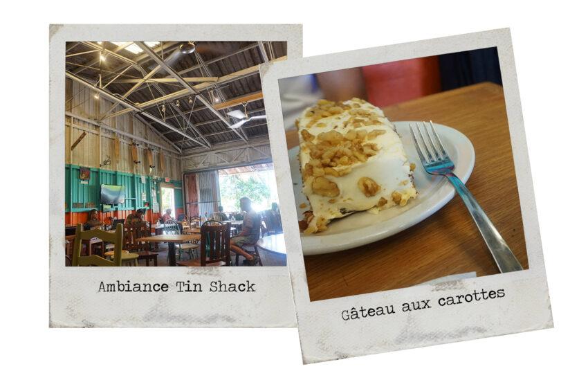 tin_shack