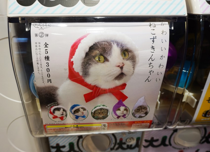 gashapon_chat