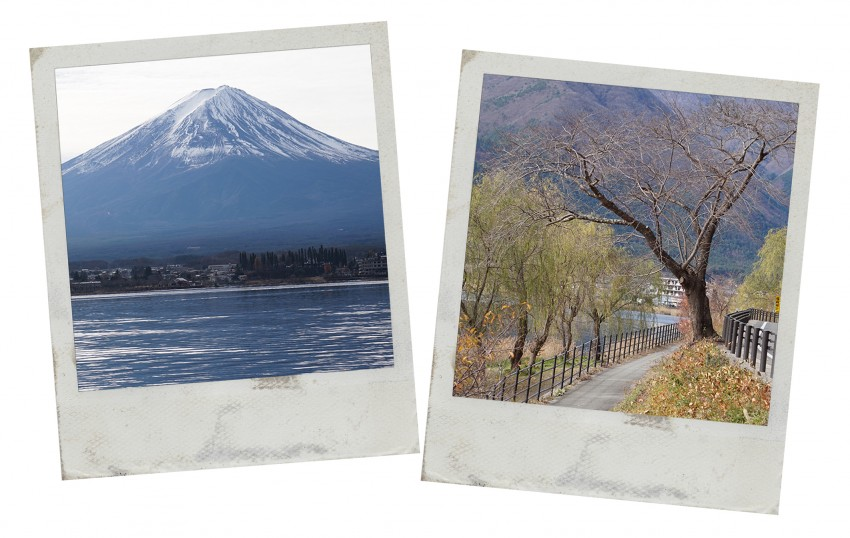 fuji_montagne