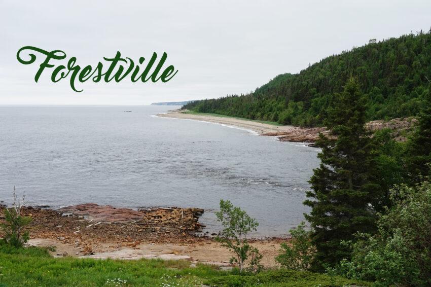 Forestville_7