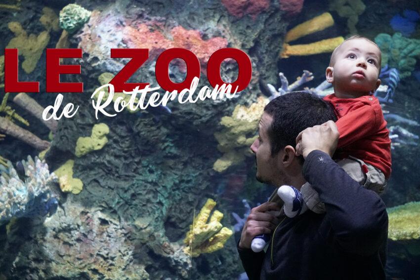 rotterdam_Zoo